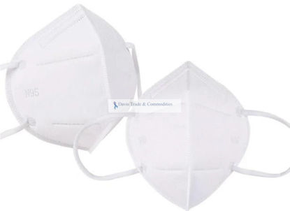 Picture of N95 Respiratory Mask