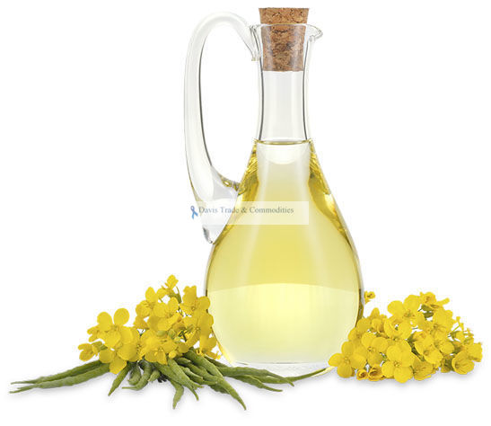 Picture of Canola Oil