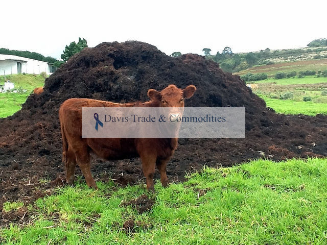 Picture of COW MANURE