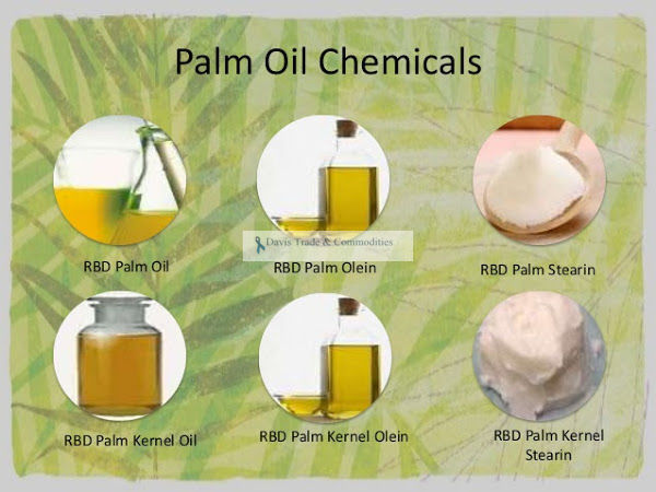 Picture of Palm Kernel Olein